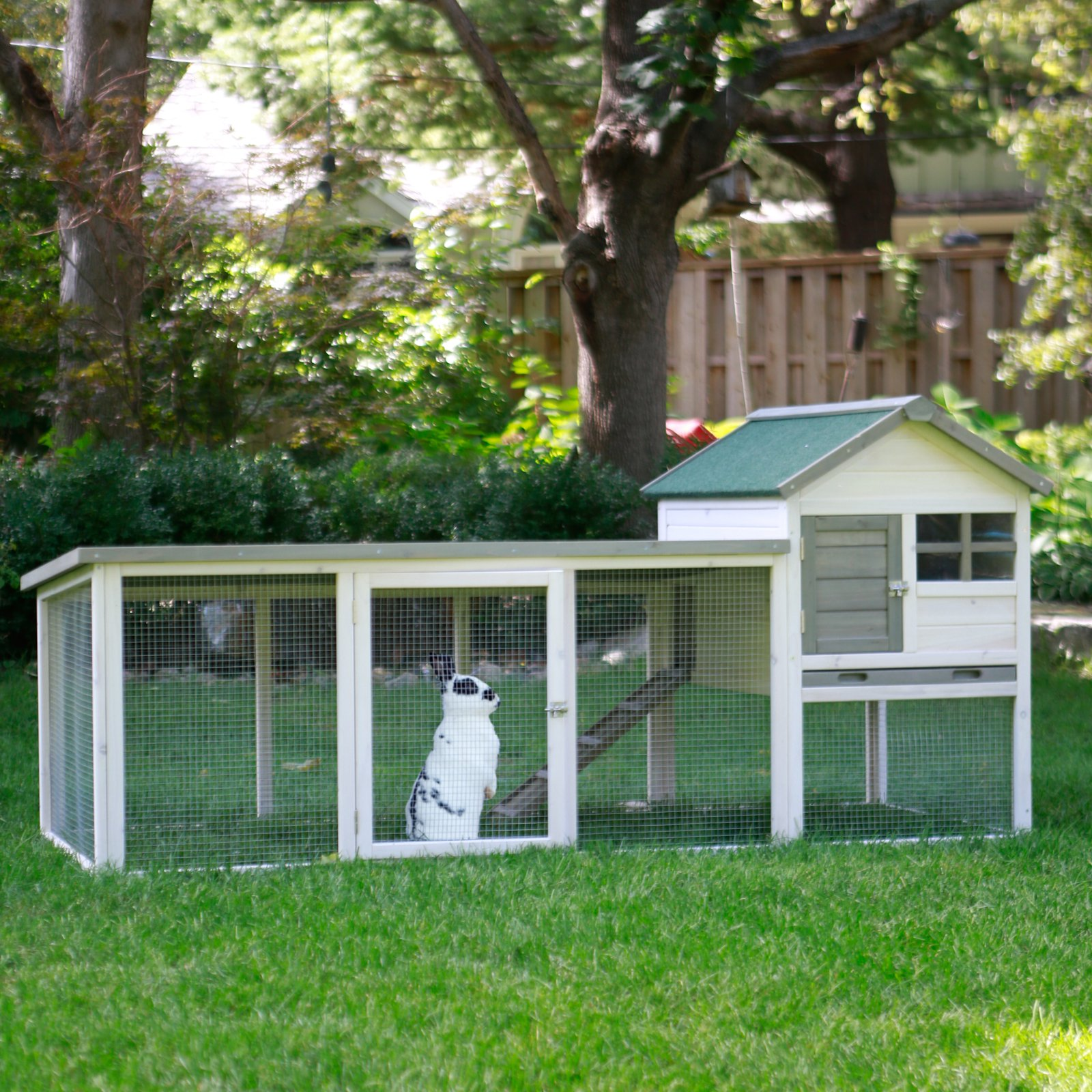 Boomer & George White Wash Outdoor Rabbit Hutch with Extended Run by