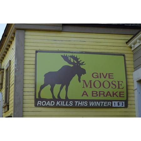 Moose Warning Sign - LAMINATED POSTER Moose Road Kill Billboard Roadsign Sign Warning Poster Print 24 x 36