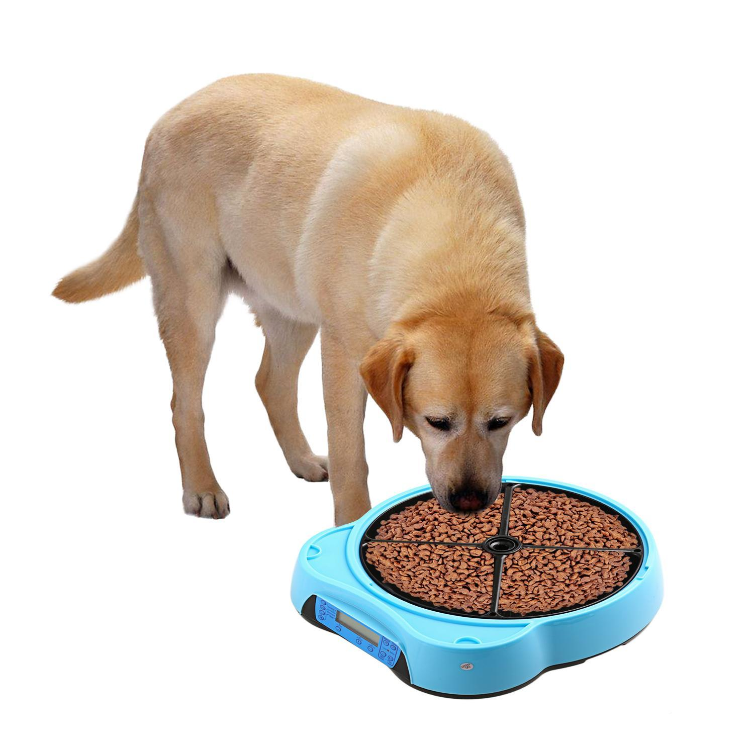 built with in webcam and apps food com dry feed wet dog amazon model now smart timer feeder ios android for pet dp meds go supplies treats