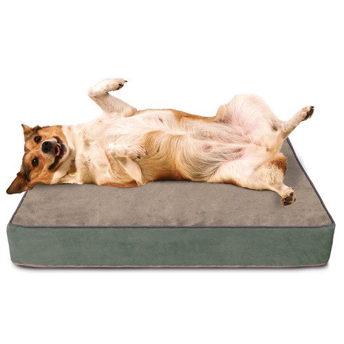 Buddy Beds Luxury Memory Foam Dog Bed with Lux Designer Microfiber Cover