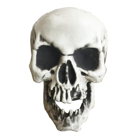 Realistic Looking Skeleton Skull for Best Halloween