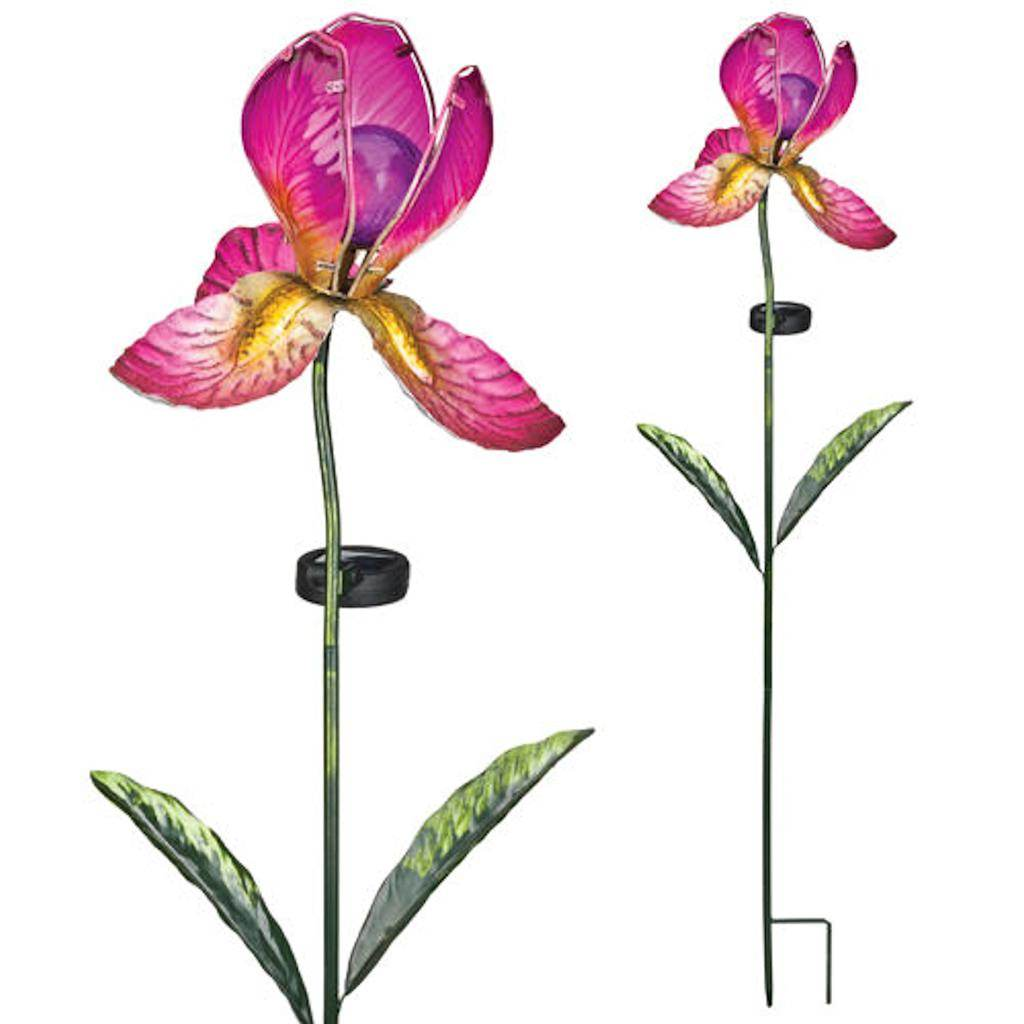 "Regal Art  and  Gift 11247 - 39"" x 8"" Fuchsia iris Garden Stake Solar LED Light"