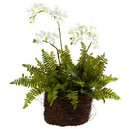 Nearly Natural Mini Phalaenopsis and Fern with Bridsnest Planter