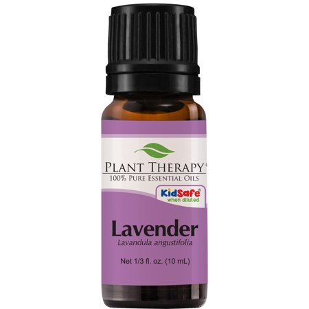 Plant Therapy Lavender Essential Oil   100% Pure, Undiluted, Natural Aromatherapy, Therapeutic Grade   10 mL (1/3 (Pure Aromatherapy)