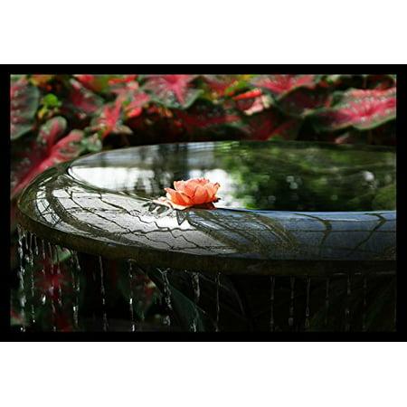 Garden Wall Water Fountain - FRAMED Rose Fountain by Wall Decor Prints 18x12 Art Print Poster Wall Decor Garden Fountain Rose Sun Light Flowers Greenery Water