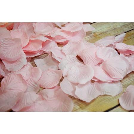 Quasimoon Pink Silk Rose Petals Confetti for Weddings in Bulk by PaperLanternStore](Bulk Confetti)