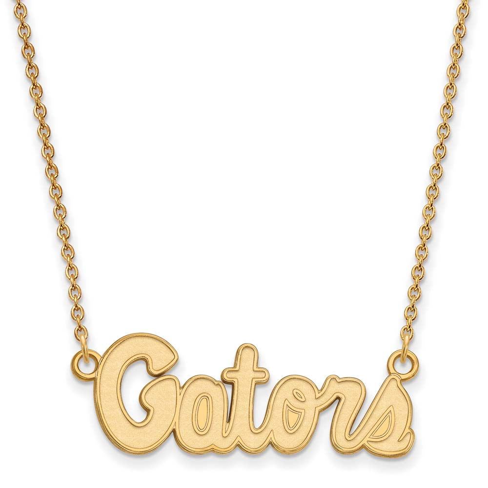 Florida Small (1/2 Inch) Pendant w/Necklace (Gold Plated)