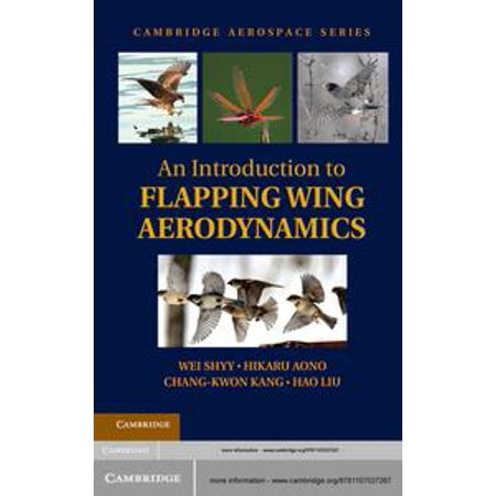 An Introduction to Flapping Wing Aerodynamics - eBook