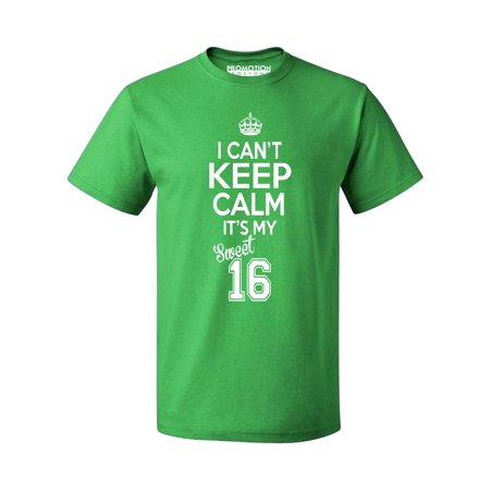 P&B SWEET SIXTEEN IT'S MY BIRTHDAY! Men's T-shirt, Green, 3XL - Sweet 16 Menu Ideas