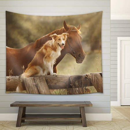 wall26 - Red Border Collie Dog and Horse Together at Sunset in Summer - Fabric Wall Tapestry Home Decor - 68x80 (Border Collie Fabric)