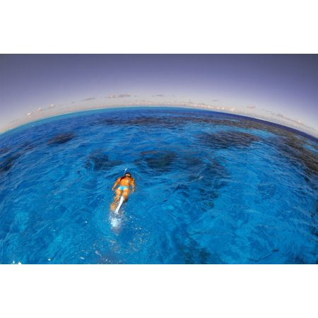 Snorkeler exploring lagoon in Bora Bora French Polynesia Poster Print by Aaron WongStocktrek