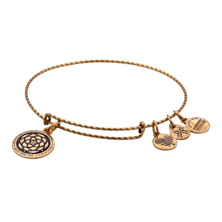 Alex and Ani New Beginnings Double Sided Embossed Charm Bangle Bracelet - Rafaelian Gold