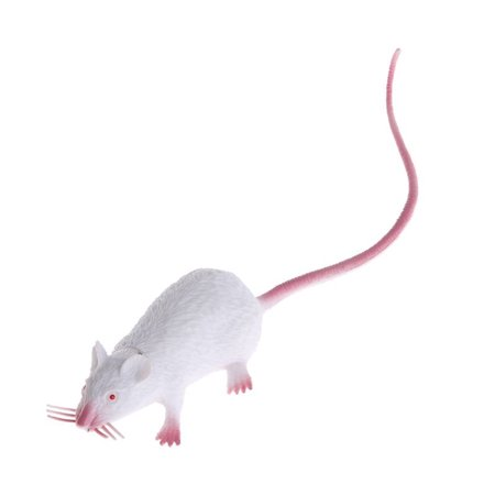 Plastic Rats Mouse Model Trick Toys Halloween Decor Tricks Pranks Props Toy Color:White