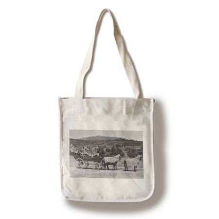 Jacksonville, Oregon - A Bandwagon View (100% Cotton Tote Bag - Reusable)