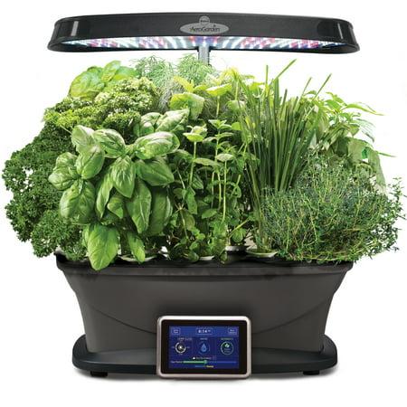 Miracle-Gro AeroGarden Bounty with Gourmet Herbs (Aerogarden Miracle Gro Bounty Seed Starting System Multi)