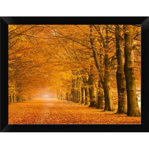 East Urban Home 'Woods' Framed Photographic Print