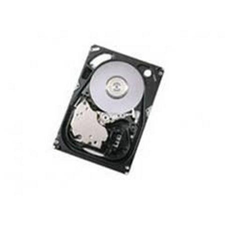 IBM 24P3676 IBM 24P3676 NEW IBM 36.4GB 10K 68PIN U160 SCSI NHP HDD * NEW BULK IBM