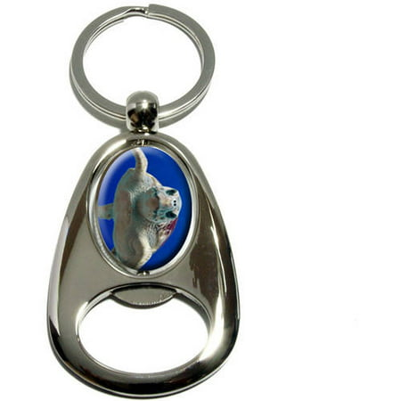 Loggerhead Sea Turtle  Ocean Scuba Diving  Chrome Plated Metal Spinning Oval Design Bottle Opener Keychain Key Ring