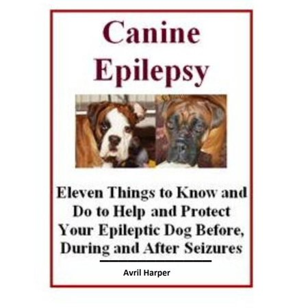 Canine Epilepsy: Eleven Things to Know and Do to Help and Protect Your Epileptic Dog Before, During and After Seizures - (Things To Do After Dinner)