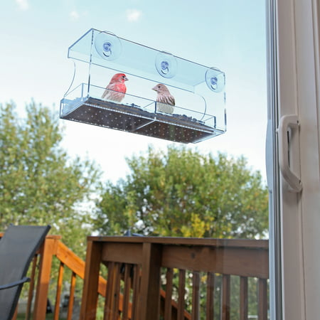 Clean Cup Feeder - Large Window Bird Feeder with Strong Suction Cups