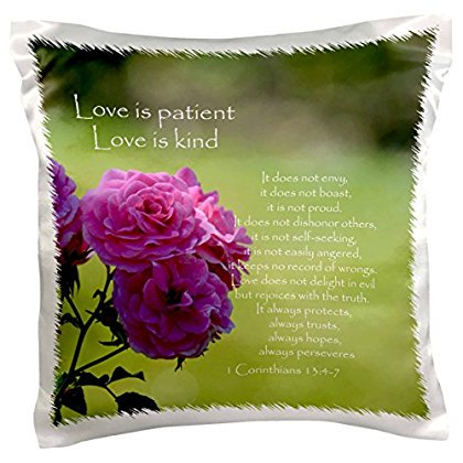 3dRose Pretty Pink Roses Love is Patient Bible Verse - Inspirational, Pillow Case, 16 by 16-inch