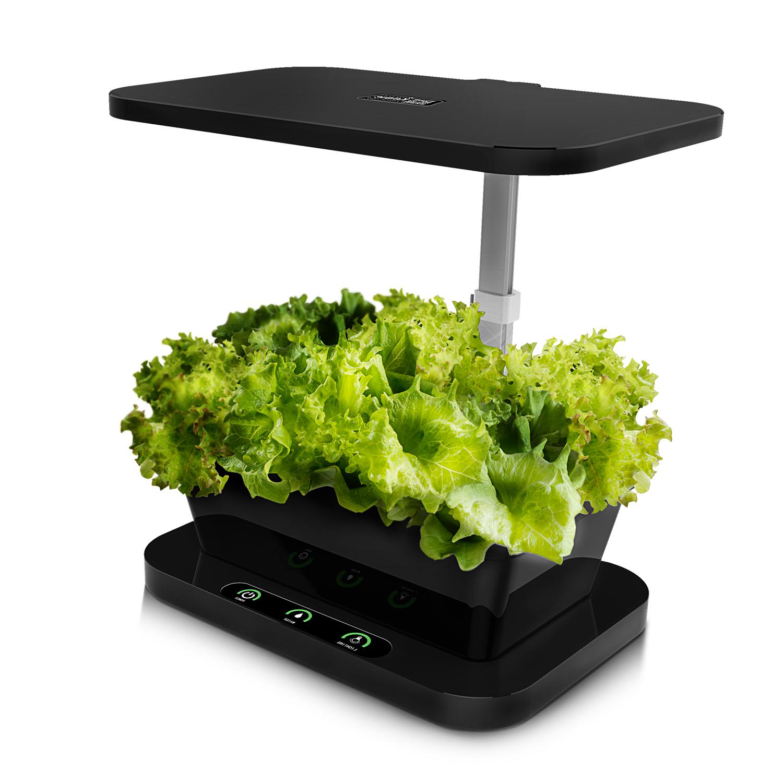 Ainfox Indoor Herb Garden Kits Germination Kits Growing G...