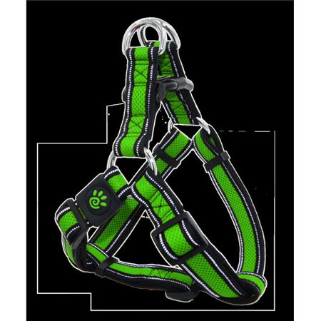 Doco DCA202-07S Dual Layer Air Mesh Reflective Step-In Harness Leash, Light Green -