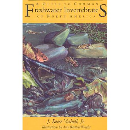 Invertebrate Animals (A Guide to Common Freshwater Invertebrates of North America )