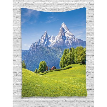 Dark Sky Hanging (Europe Tapestry, Blooming Flowers Snowcapped Mountain Tops in Background National Park Bavaria, Wall Hanging for Bedroom Living Room Dorm Decor, Green Sky Blue, by)