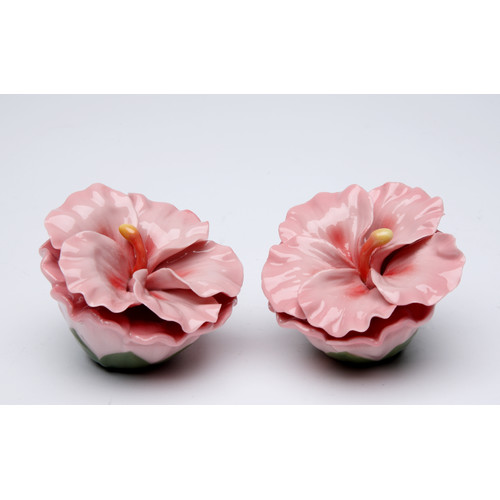 Cosmos Gifts Hibiscus Rosa Salt and Pepper Set