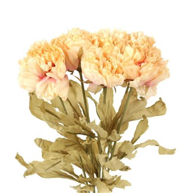 Distinctive Designs DH-222A-ANBE DIY Flower 22 in. L Dried Artificial Beige Peony - Pack of 12