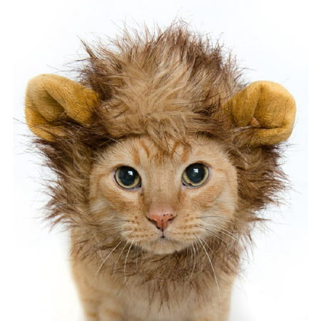 Pet Krewe Lion Mane Cat and Dog Costume (Pet Cat Halloween Costumes)