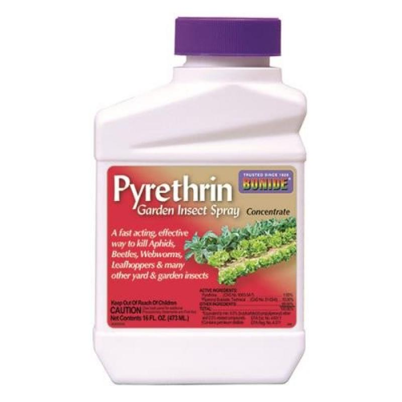 BONIDE Pyrethrin Garden Insect Spray Conc. 8oz