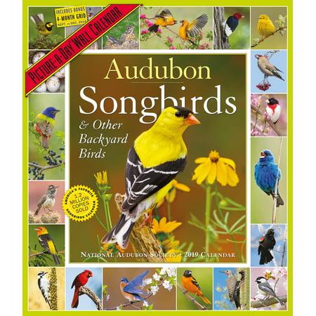 Birds 2008 Calendar (Audubon Songbirds and Other Backyard Birds Picture-A-Day Calendar 2019 (Other))