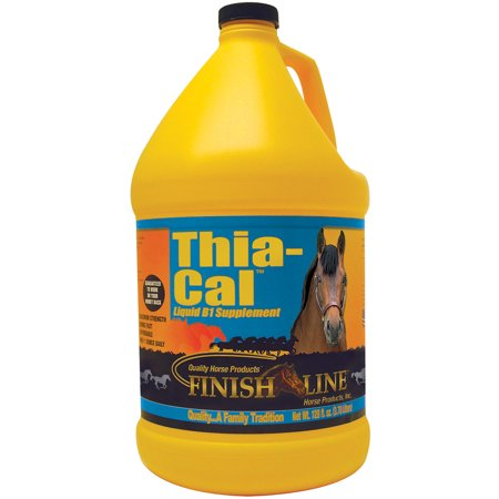 32 Day Supply - Thia-Cal™ Liquid B-1 Supplement, 32 oz (32 day supply)