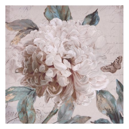 Patton Wall Decor Morning Peony Floral Canvas Art ()