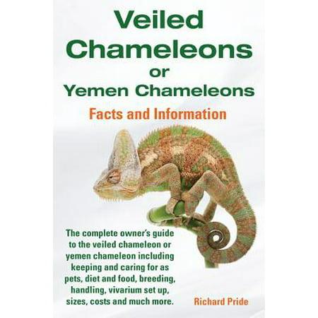 Veiled Chameleons or Yemen Chameleons Complete Owner's Guide Including Facts and Information on Caring for as Pets, Breeding, Diet, Food, Vivarium Set ()