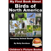 My First Book About the Birds of North America: Amazing Animal Books - Children's Picture Books - eBook