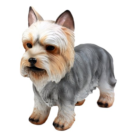 Groomed Adorable Yorkshire Terrier Dog Statue 7.75