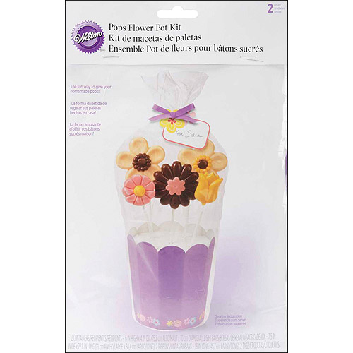 Wilton Treat Pop Bouquet Kit, Garden Flower 2 ct. 415-0001