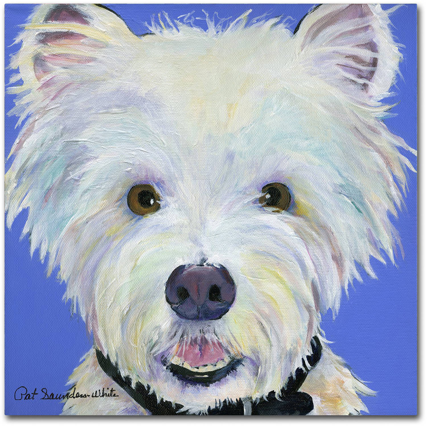 "Trademark Fine Art ""Amos"" Canvas Art by Pat Saunders-White"