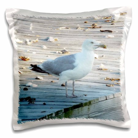 3dRose Seagull Standing On The Dock Of The Bay, Pillow Case, 16 by (Sitting On The Dock Of The Bay Artist)