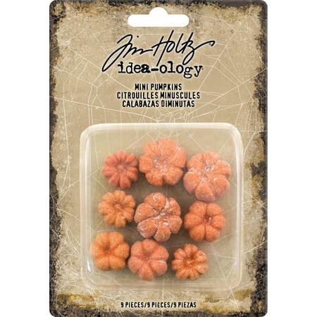 Idea-Ology Mini Pumpkins 9/Pkg- - image 1 de 1