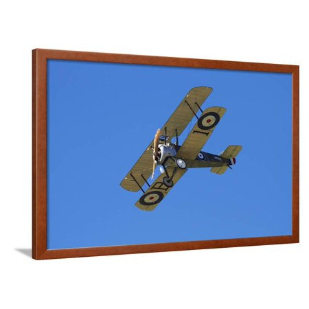 Wwi Sopwith Camel (Sopwith Camel, WWI Fighter Plane, War Plane Framed Print Wall Art By David)