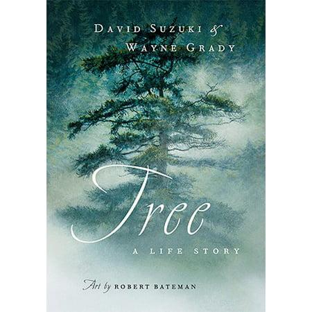 Tree : A Life Story (Tree Book)