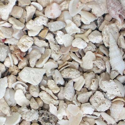 Carib Sea Aragonite 00120 Florida Crushed Coral Sand, 15 lb/Bag