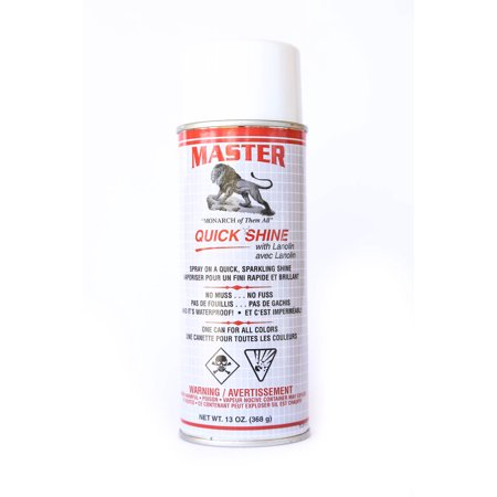 Master Quick W Lanolin Shine Leather Shoe Boot Shine Spray   No Buff 13 Oz