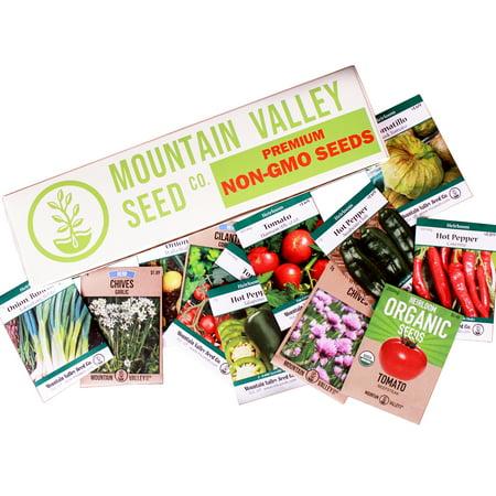 Mexican Salsa Garden Seed Collection - Deluxe Assortment - 12 Non-GMO Vegetable Gardening Seed Packets: Jalapeno, Tomato, Cilantro, Onion, Tomatillo, Garlic Chives, More ()