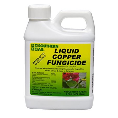 Southern Ag Liquid Copper Fungicide, 16oz - 1