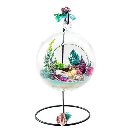 Glass Terrarium Globes (Terrarium Kit | Mermaid Sleep on Shell | Mermaid Series | Complete Terrarium Gift Set with Stand | 6